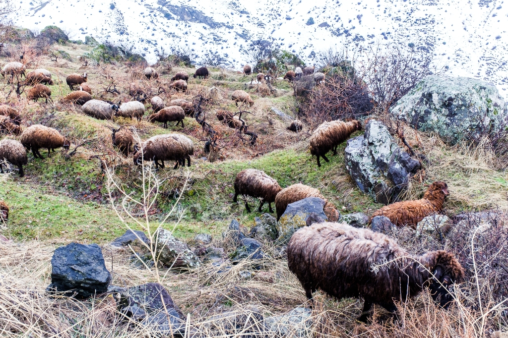 Armenia_2-16