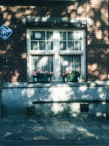 typical Dutch window
